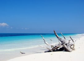 Escapade - Seychelles