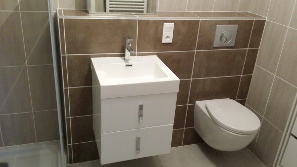 renovation-wc