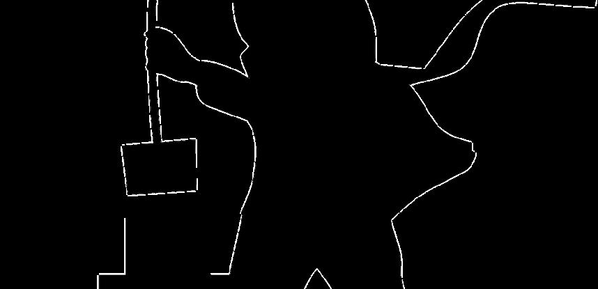 ramoneur-cheminee